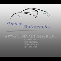Auto-Stienen