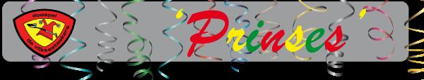 Banner-sponsoren-prinses