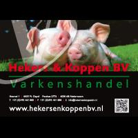 Hekers